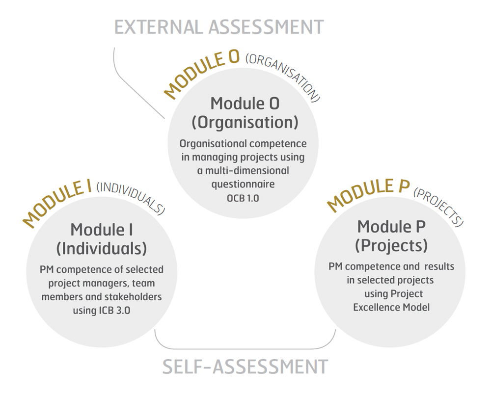 Delta Ipma International Project Management Association